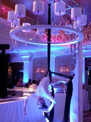 Aerial Bartender Cirque Skyline Talent Amp Events